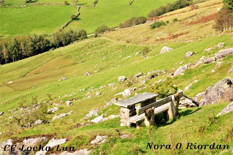 Nora 3